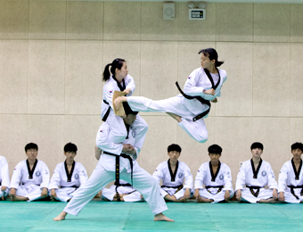 Dept. of Taekwondo Diplomacy